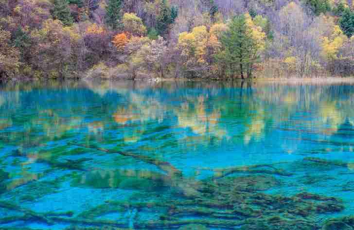 紅葉が水面に映し出された九寨溝の池