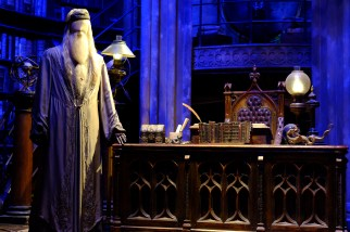 Dumbledore's costume in his oval office used for the movies.