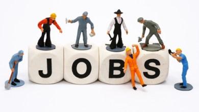 HSSC Tracer Inspector Patwari Assistant ,clerk Recruitment 2015 Apply Online