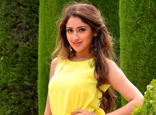 Sayesha Saigal Family Photos, Father, Mother, Husband, Age, Height, Biography