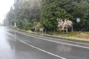 島津豊久の墓(島津塚)入口