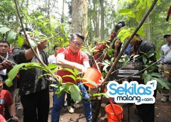Foto: Gubernur Ridwan Kamil ikut menanam bibit pohon dalam gerakan Leuweung Padjadjaran di Desa Kampung Gambung, Kecamatan Pasirjambu, Kabupaten Bandung.