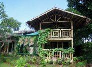 The Bamboo School - Sekolah Bisa!