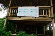 The Bamboo School