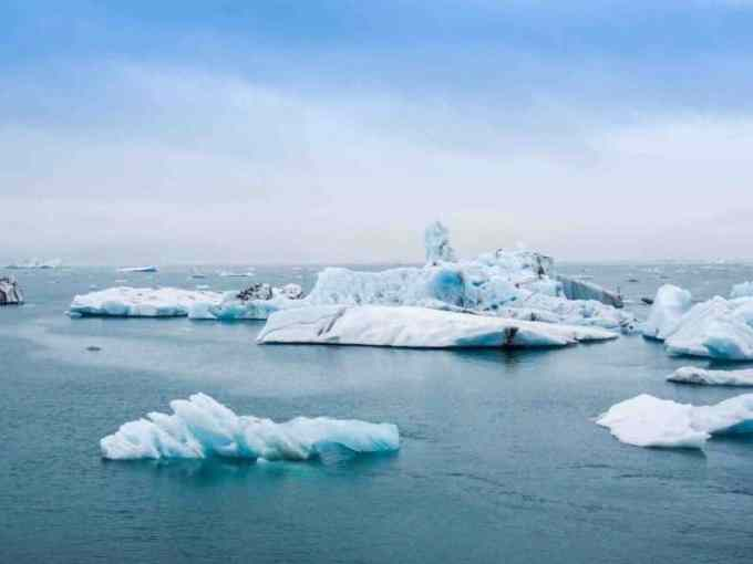 Contoh Teks Eksposisi bidang Lingkungan Hidup