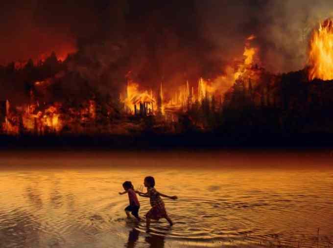 Contoh Teks Tanggapan Kritis Tentang Kebakaran Hutan