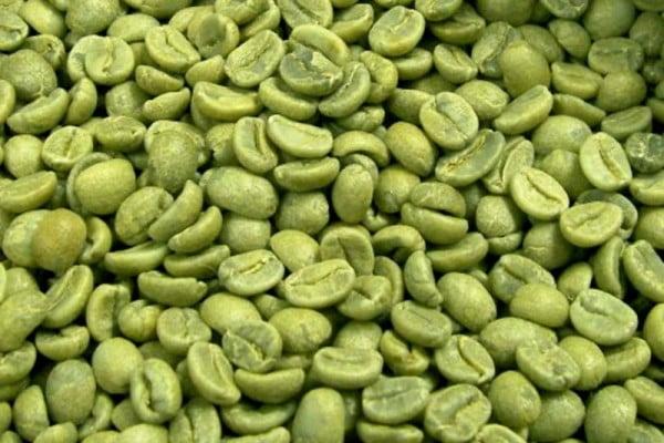 zielona-kawa-odchudzanie