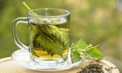 Pokrzywa herbatka napar