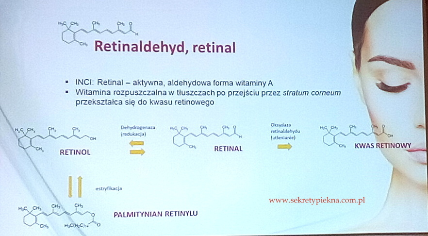 retinolu - retinaldehyd - retinal