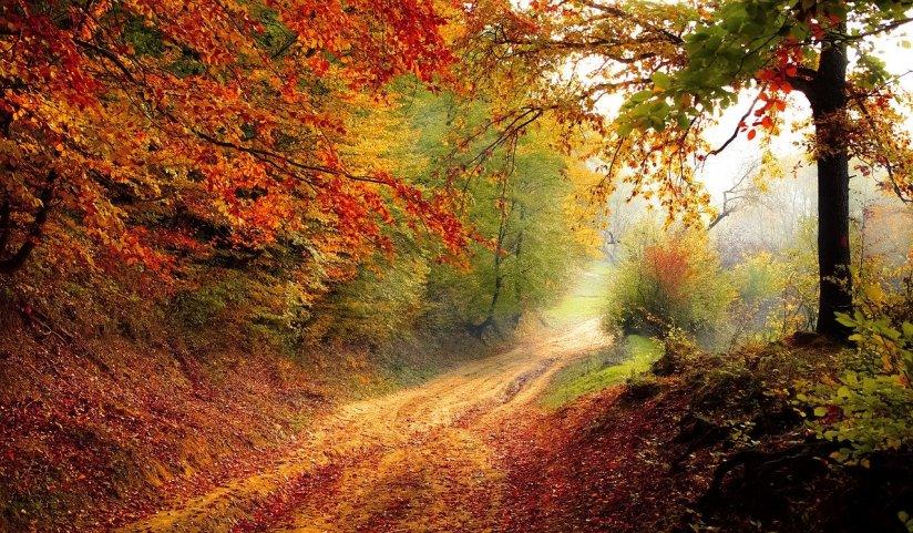 Endlich Herbstferien