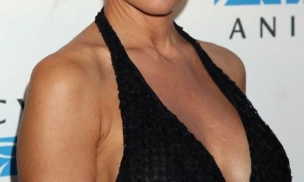 Pamela Anderson, grote tieten in een sexy jurk