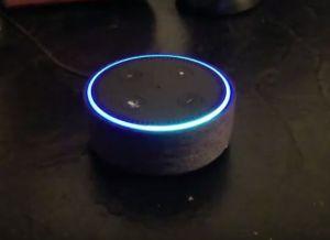 """Amazon Alexa gadget denkt dat het """"a lot of sex"""" heet"""