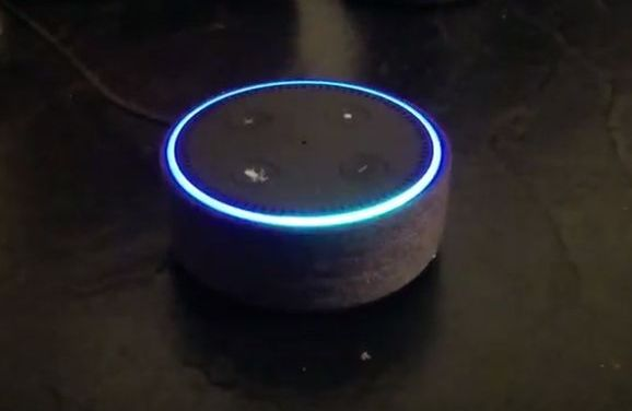 "Amazon Alexa gadget denkt dat het ""a lot of sex"" heet"