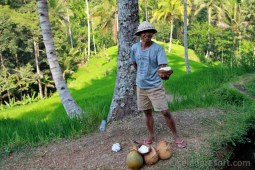 Jack Daniels z Gunung Kawi
