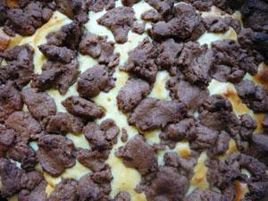 Brauner Topfenkuchen mit Streuseln