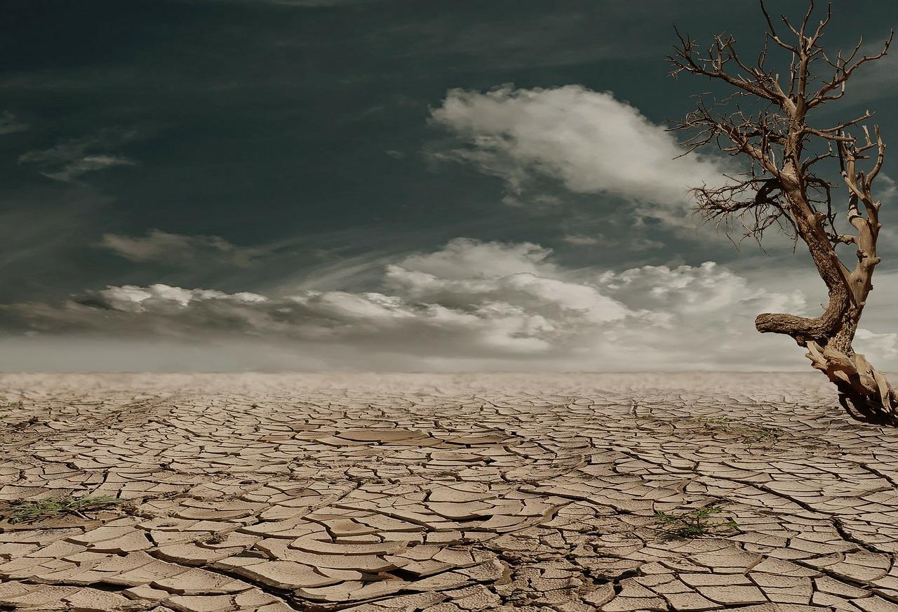 Ausgetrockneter zerrissener Boden
