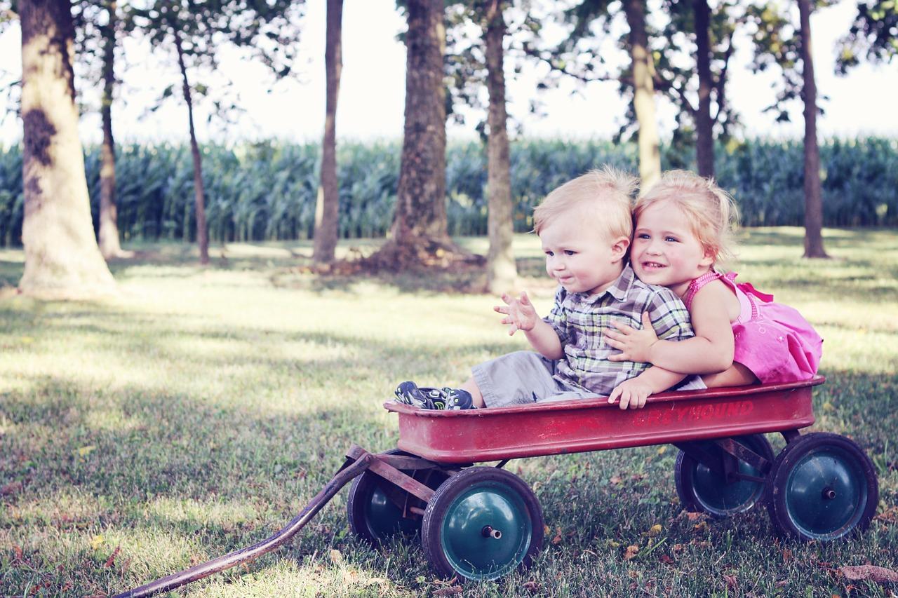 Kleines Mädchen und kleiner Junge im Bollerwagen