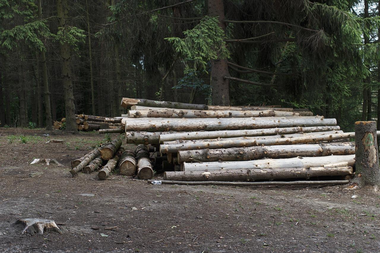 Gestapelte Holzstämme