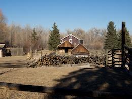 Panny 12 35  35 cabin