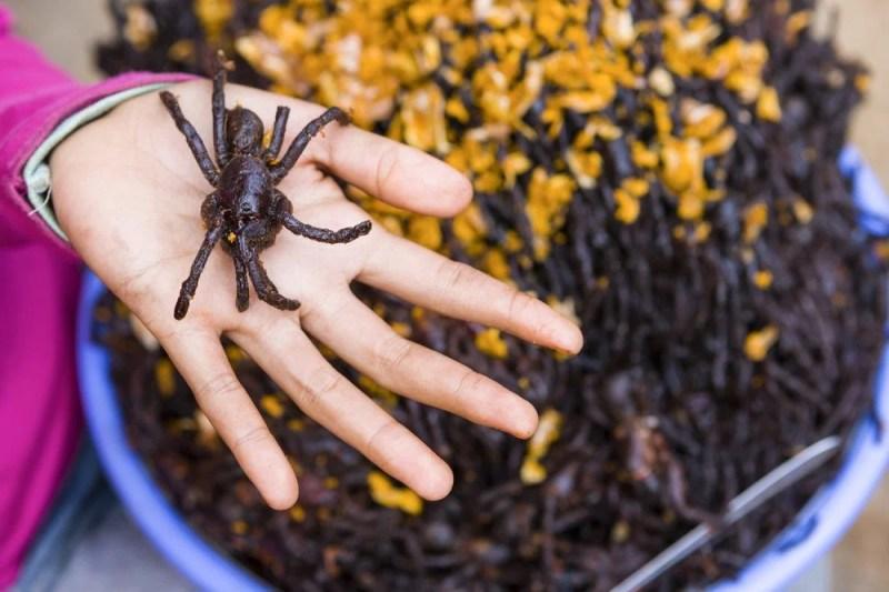 Araignée frite - Cambodge
