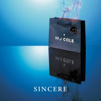 MJ Cole Sincere