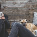 Compte joint ou compte commun : Ouvrez votre deuxième compte chez une banque en ligne