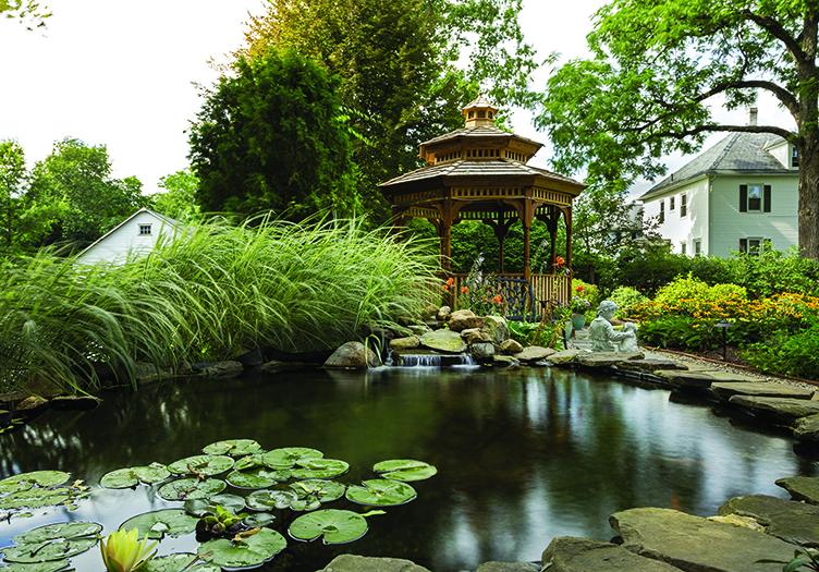 The Whistling Swan Inn Pond