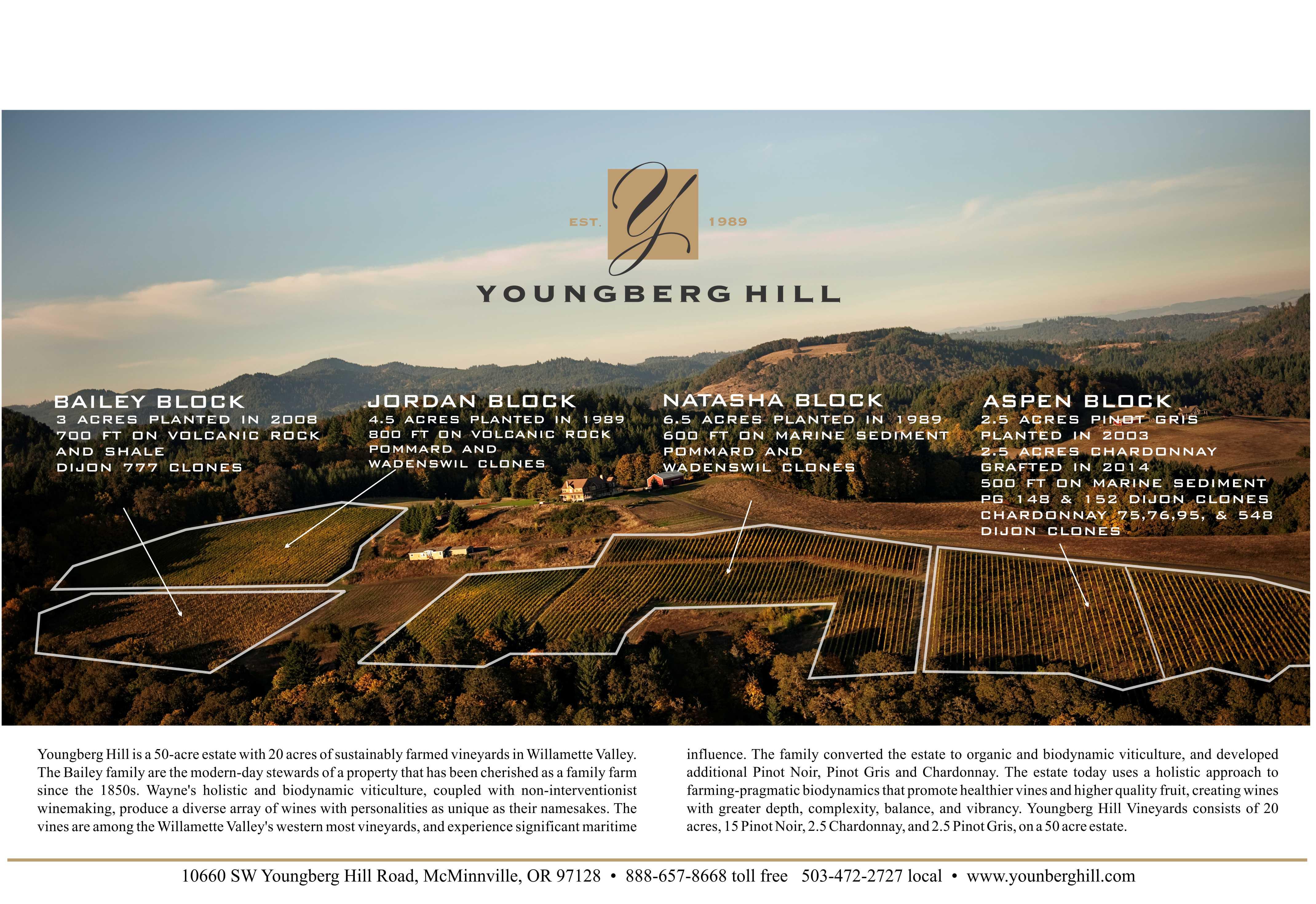 Arial vineyard blocks with details.jpg
