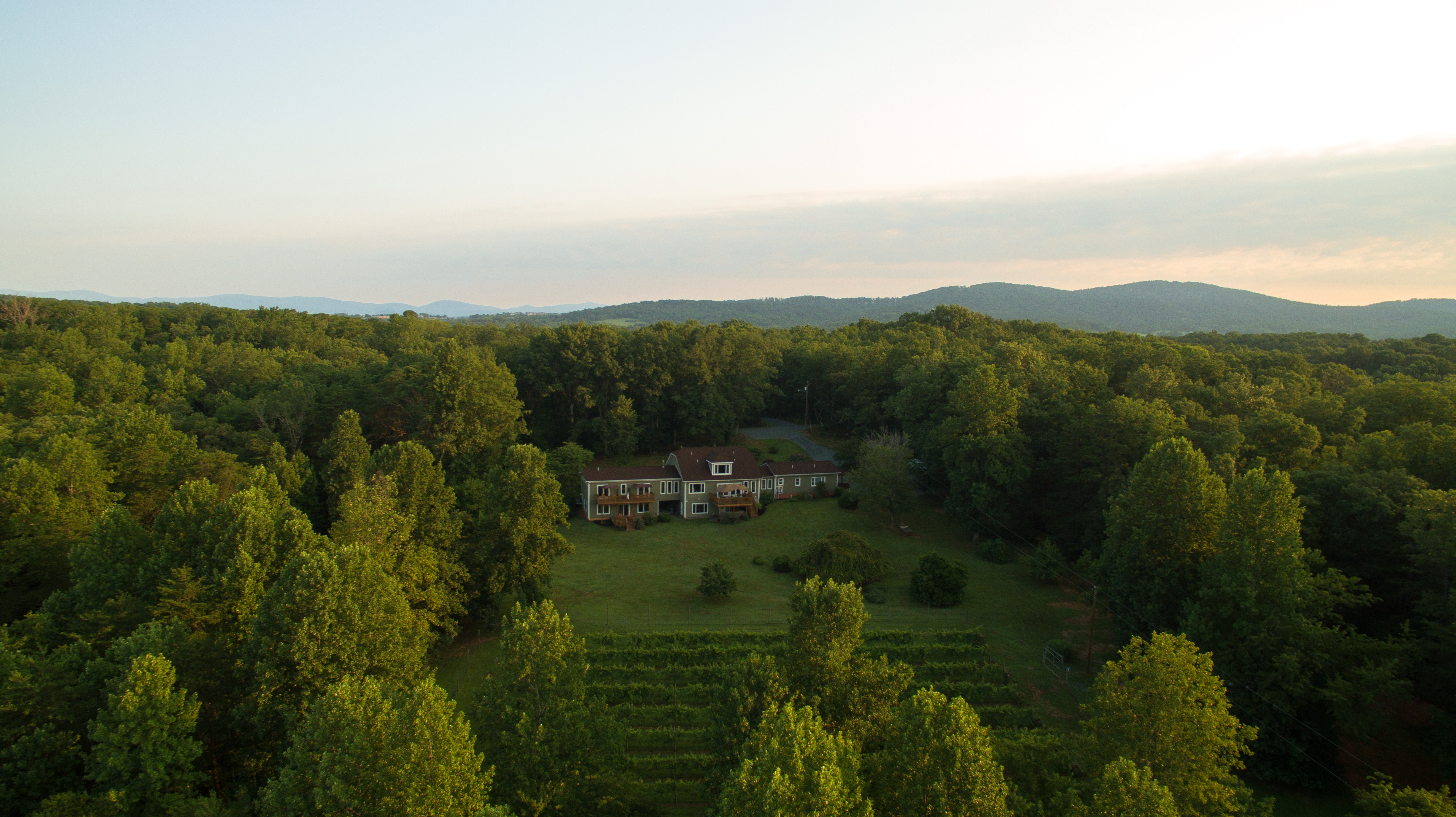 Aerial view of B&B surrounded by a lush green lawn, hundreds of green trees, and distant mountains