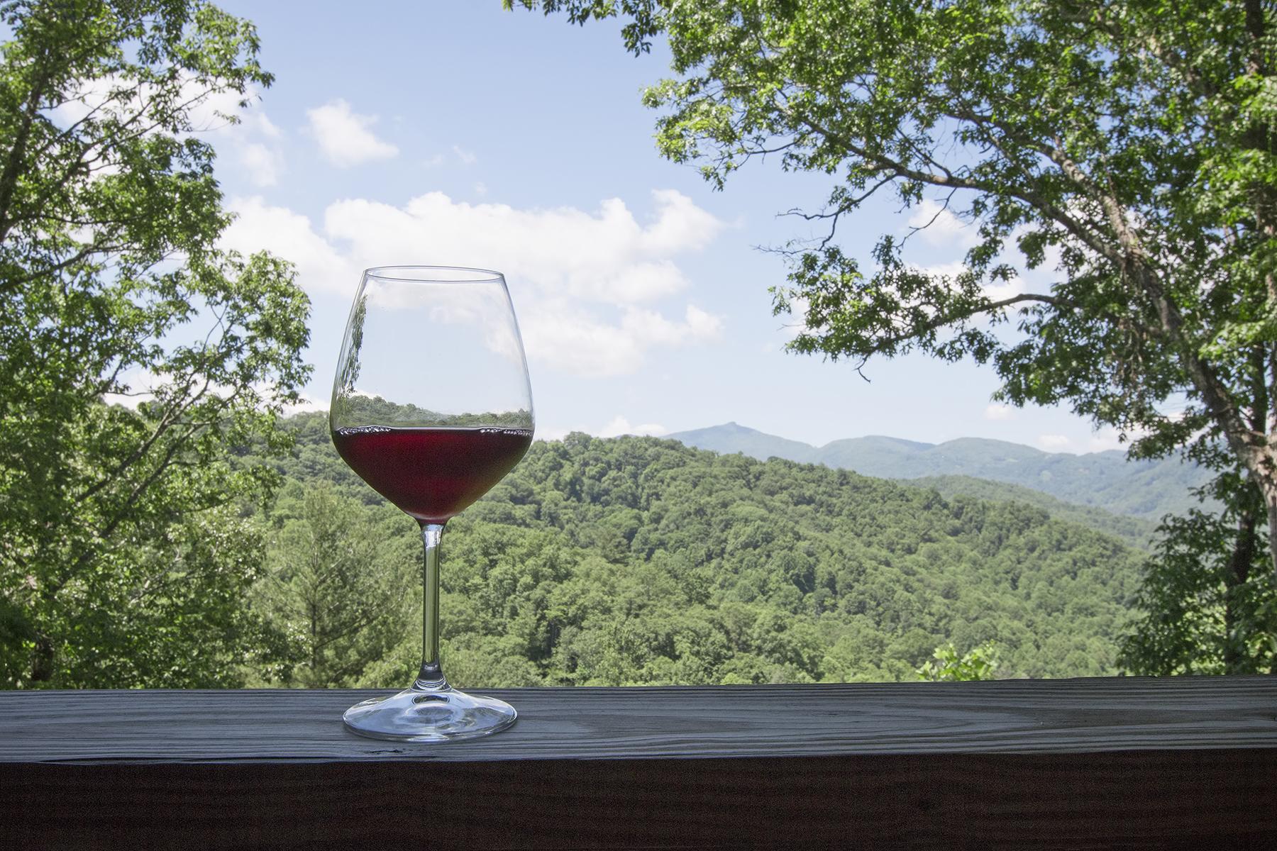 Lazy Bear Wine Glass