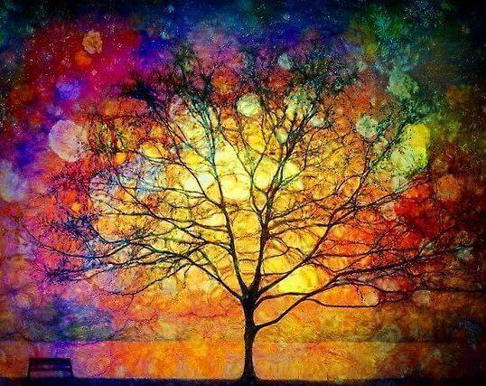arbol-colores-1