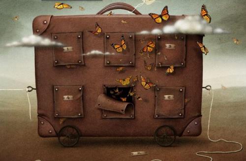 maleta-mariposas-500x327