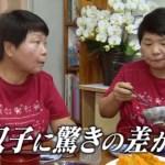 イイものショッピングゥ~!ダイエットサプリ肥後すっぽんもろみ酢!