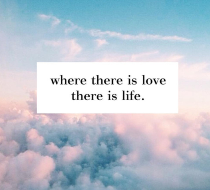 Love is life and life is love