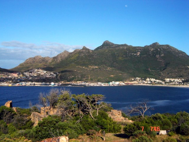 070107 CHAPPIES 006 (2)