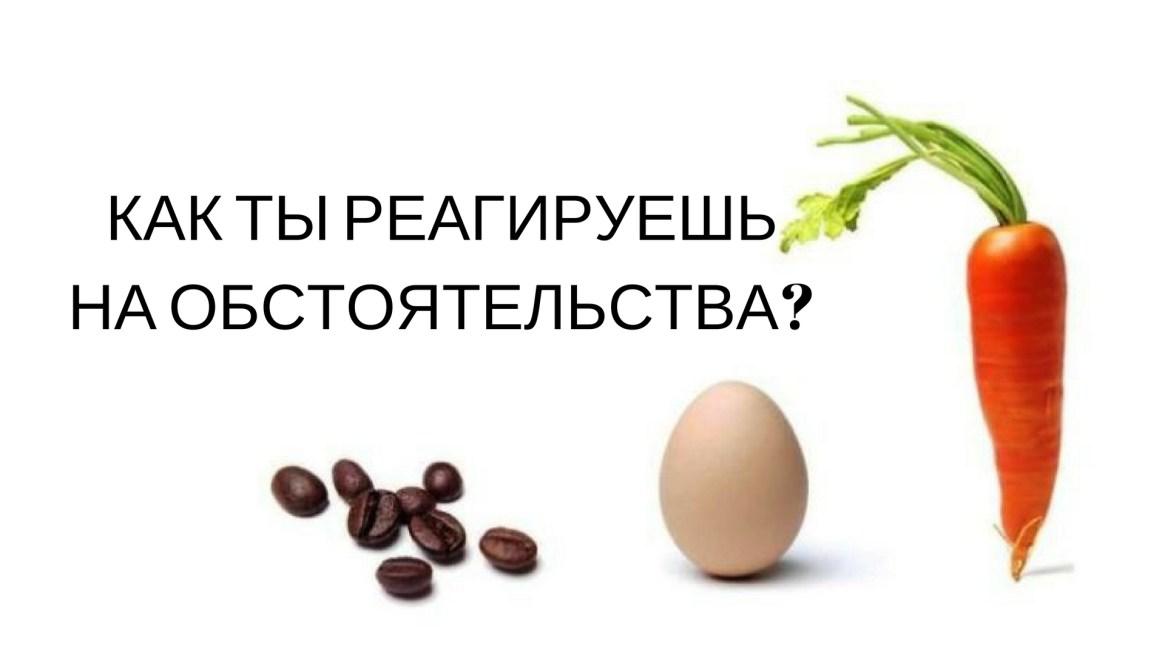 МОРКОВЬ, ЯЙЦО ИЛИ КОФЕ?