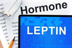 Dangers of High Leptin & How to Decrease It