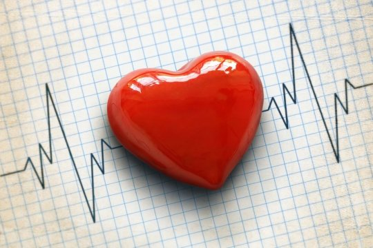 Apolipoprotein B: High & Low Levels + Ways to Improve