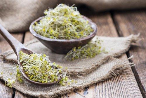 bigstock-some-fresh-broccoli-sprouts-84332267-min