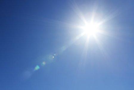 sun_101457976