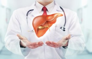 FXR Protects the Liver