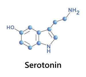 serotonin-4