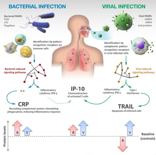 crp_infections