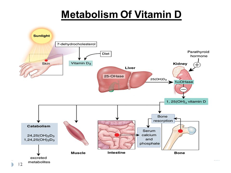 35+ Proven Health Benefits of Vitamin D (Part 2) - Selfhacked