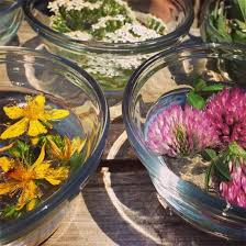 making flower essences