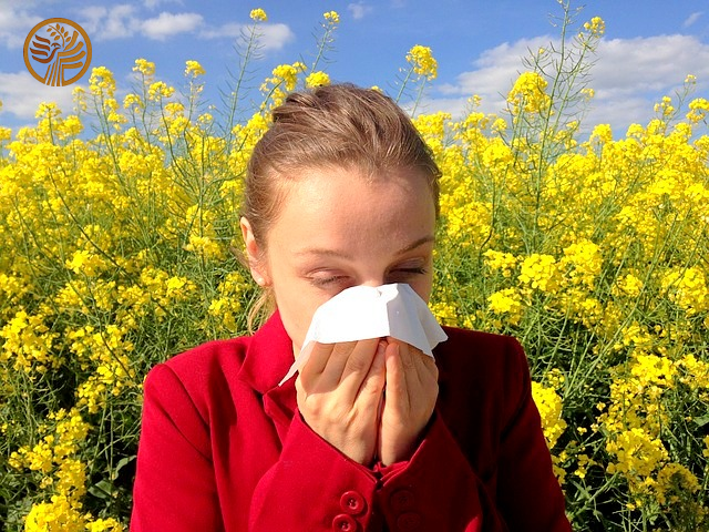 Allergies - Self Health Vitamin D