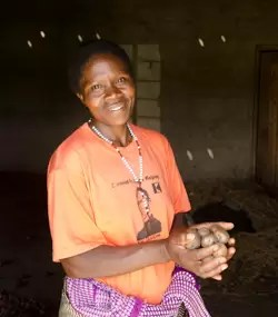 potato uganda250