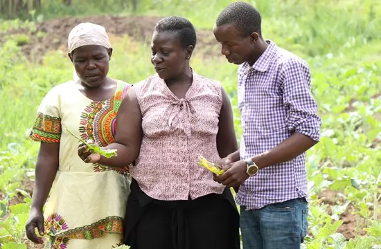YOUNG FARMERS LEARN INNOVATIVE SKILLS