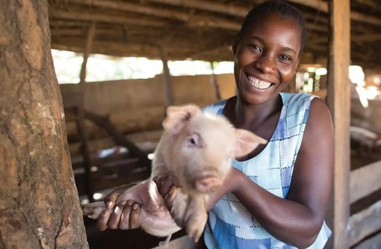 GIVE A PIGLET & CHANGE A LIFE