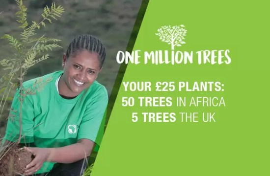 LET'S PLANT ONE MILLION TREES!